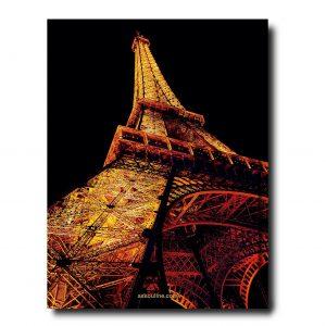 Elegant Living КНИГА PARIS CHIC